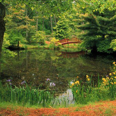 Relax in Massachusetts