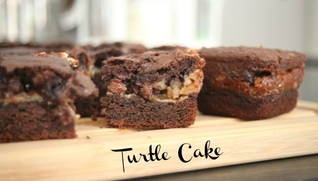 Turtle Cake How Can You Resist?