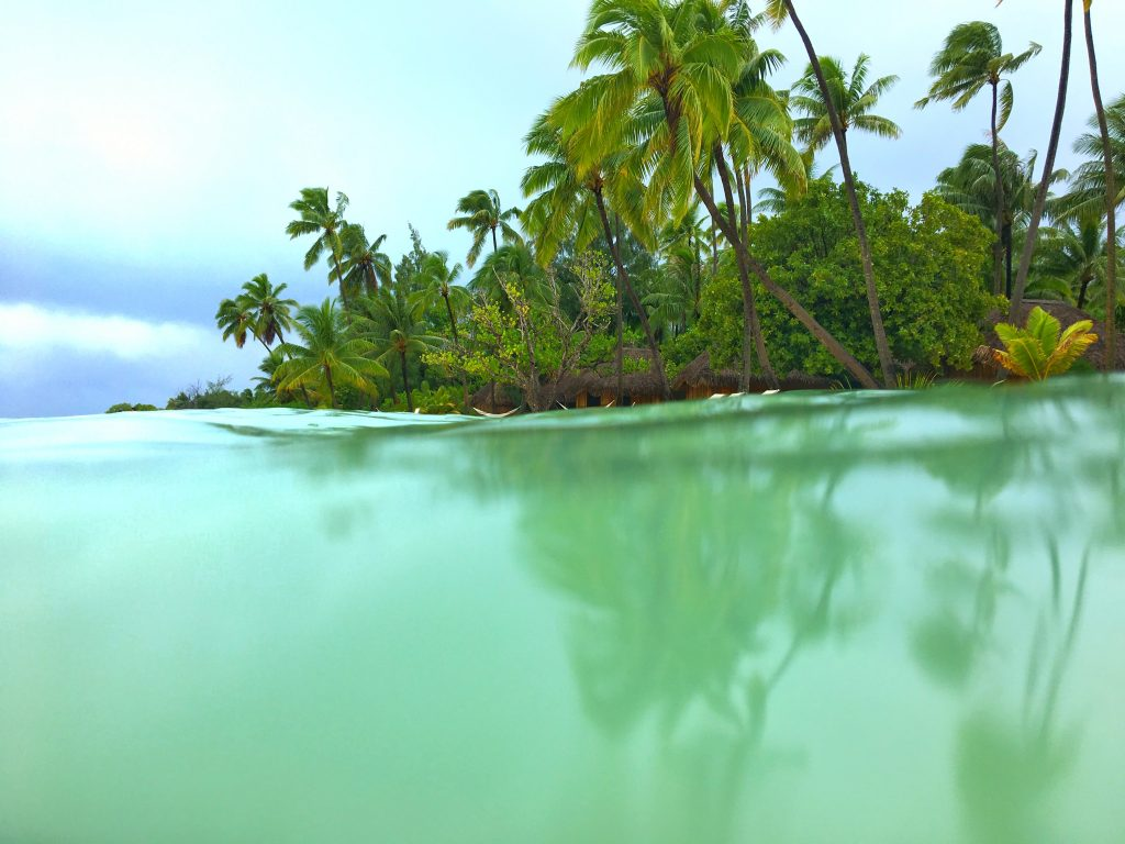 before you go to Tahiti, snorkel