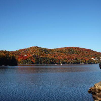 Five Things You Need to Do this Fall and One You Don't